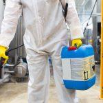 Pest Control – cea mai eficientă firmă de dezinsecție din București